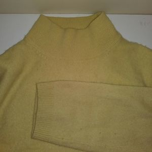 Lord & Taylor cashmere mock turtle neck